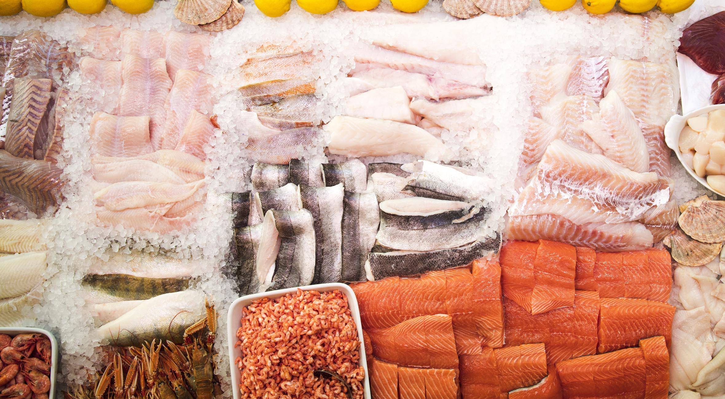 Frit valg til alt hos Kodan Fisk på Gl. Kongevej – Hæderkronet fiskeforretning byder på alt fra færøsk laks til fjordrejer, hummere, fiskefrikadeller og østers