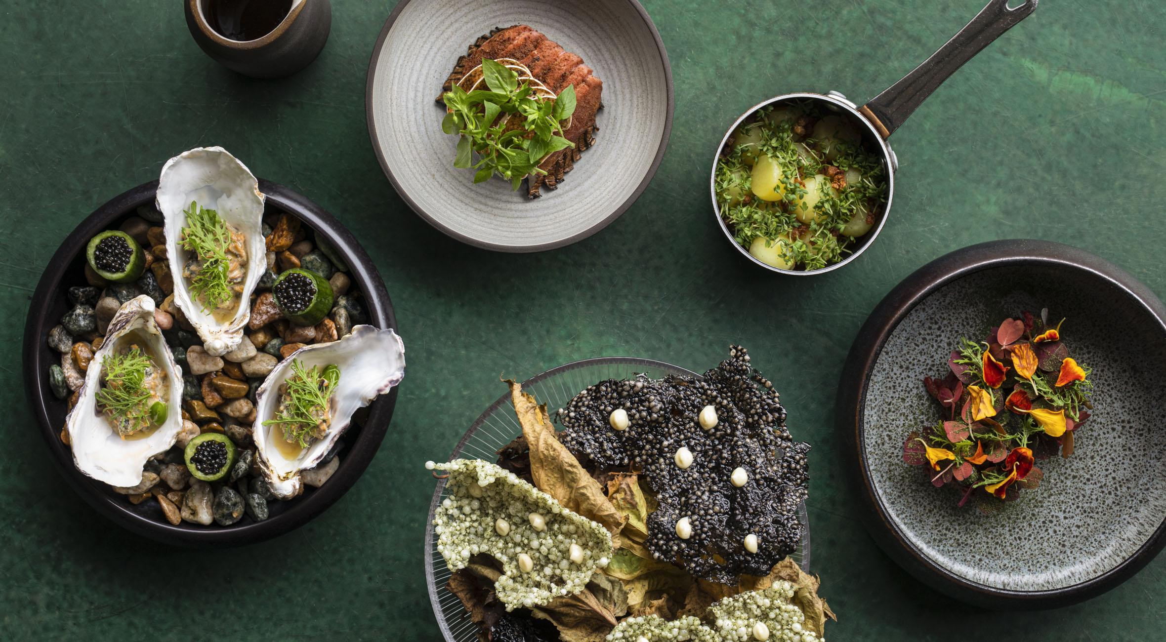 5-retters menu hos Michelin-anbefalede Mes i Indre By – Tidligere Noma-kok byder på topanmeldt nordisk gastronomi