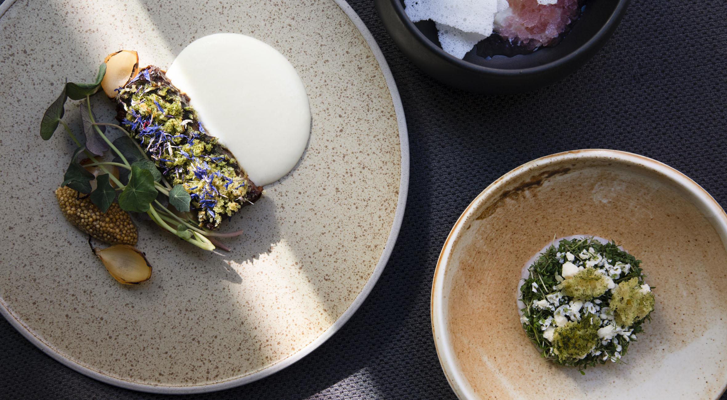"""3-retters frokostmenu hos Michelin-anbefalede Meille i Indre By – Tidligere Noma-kok får 5 stjerner i Berlingske under overskriften """"En af byens smukkeste frokostmenuer"""""""